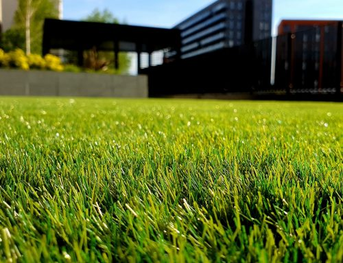 Good Lawn Maintenance